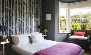 桦树卧室墙纸