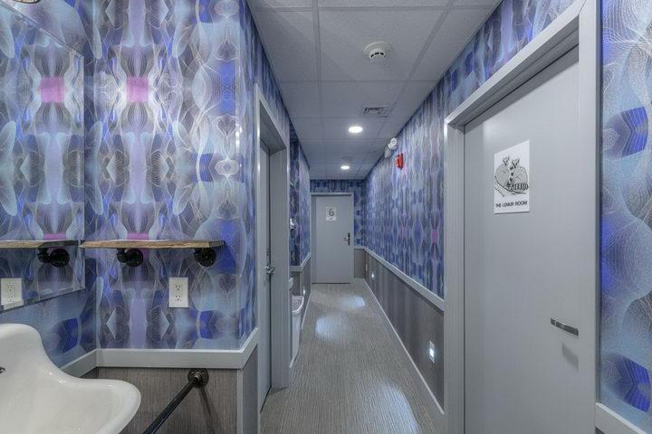 墙纸装修案例:用墙纸装修出神奇空间的美国旅馆插图5