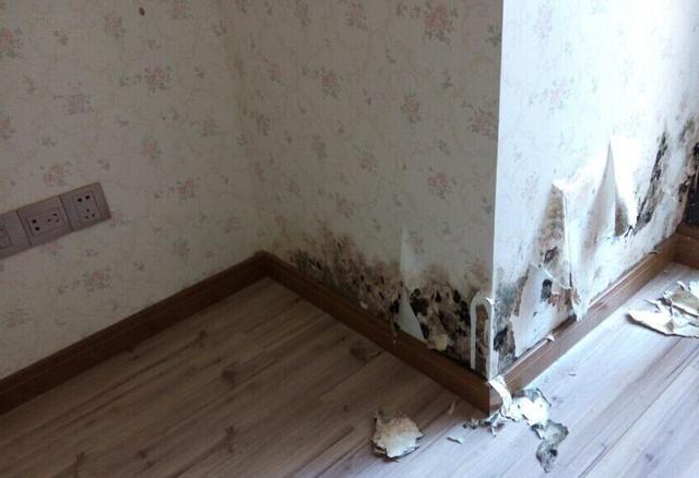 墙纸脱落的修复方法插图